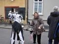 Baerentag2013SChaerer (83)